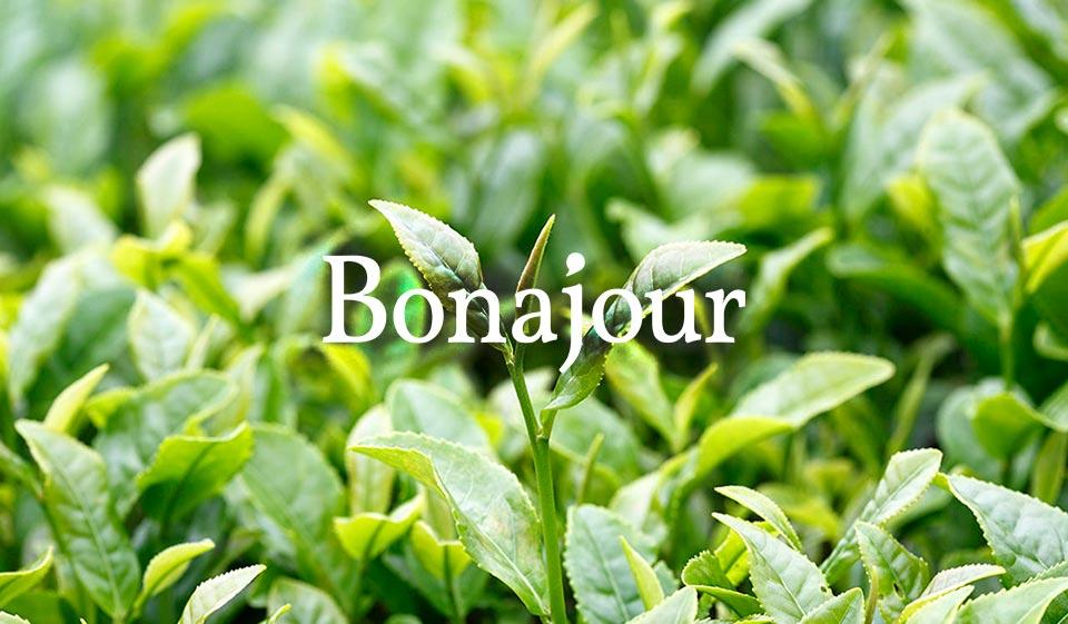 Bonajour - korean skincare cosmetics wholesale prices